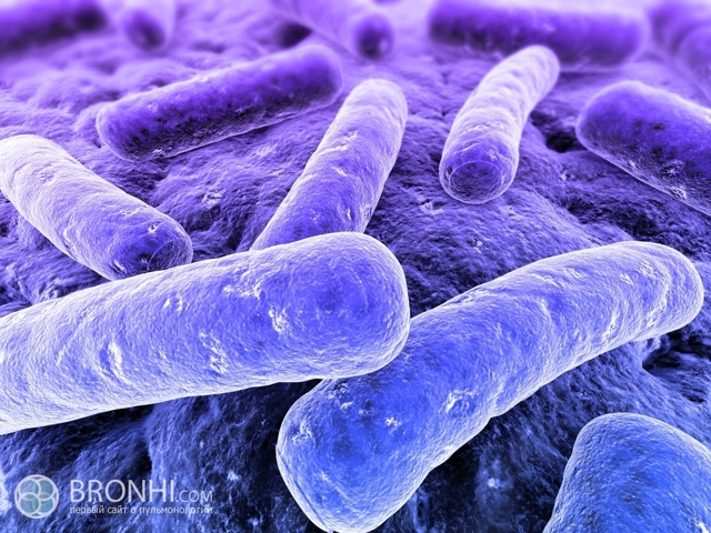 Разновидности туберкулеза легких, их формы и особенности