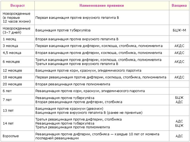 БЦЖ календарь прививок или график вакцинации у новорожденных