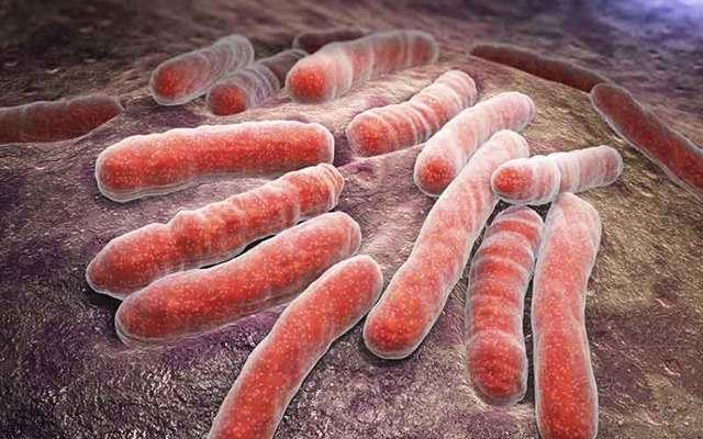 Туберкулез и беременность: чем опасен туберкулез для беременных