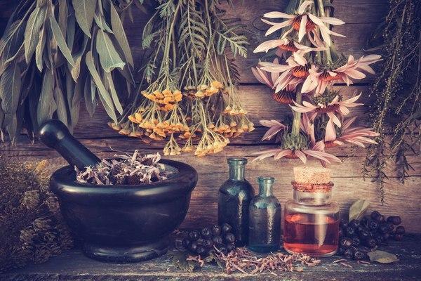 Грудной сбор при бронхите: виды травяных сборов
