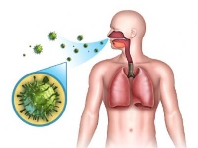 Вирусный бронхит: симптомы и лечение у взрослых и детей