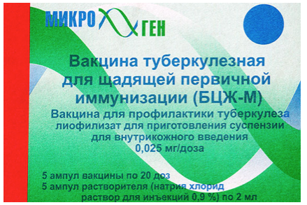 Вакцина БЦЖ: инструкция по применению, условия, противопоказания