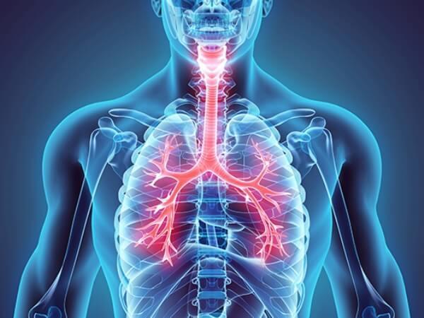 Температура при бронхите: лечение и разновидности воспаления